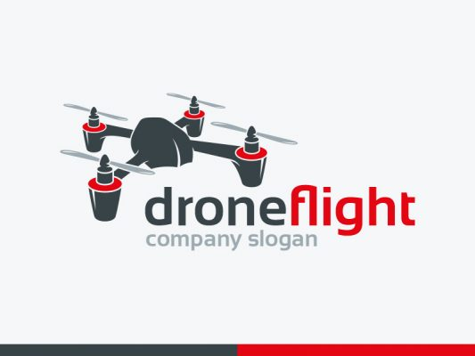 Drone Flight Logo
