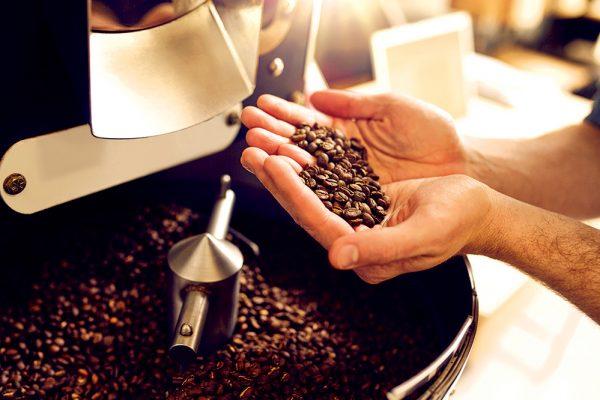 Pengolahan biji kopi